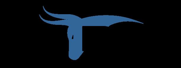 Zebull Oy - Logo